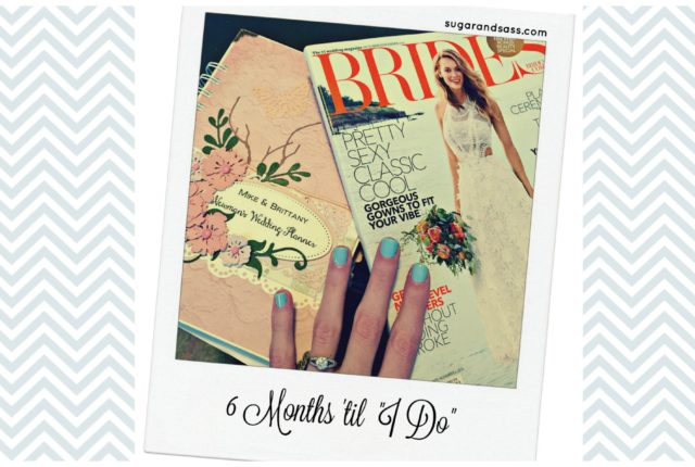 6 months cover